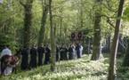 Photographies de la procession et de la liturgie du Dimanche des Rameaux